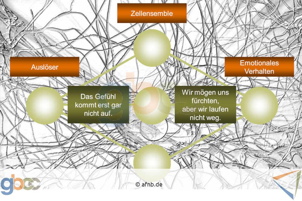 Emotionen: Kognitiver Prozess