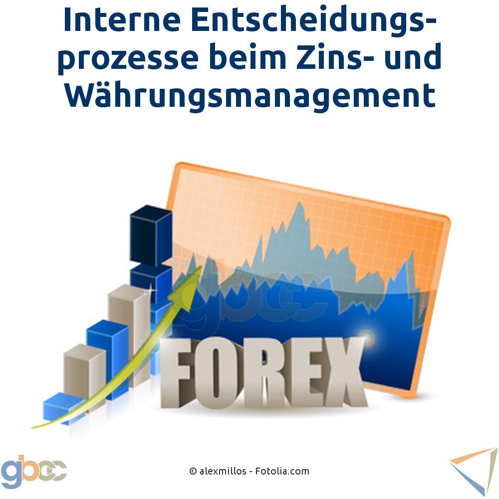 Interne Entscheidungsprozesse beim Zins- und Währungsmanagement