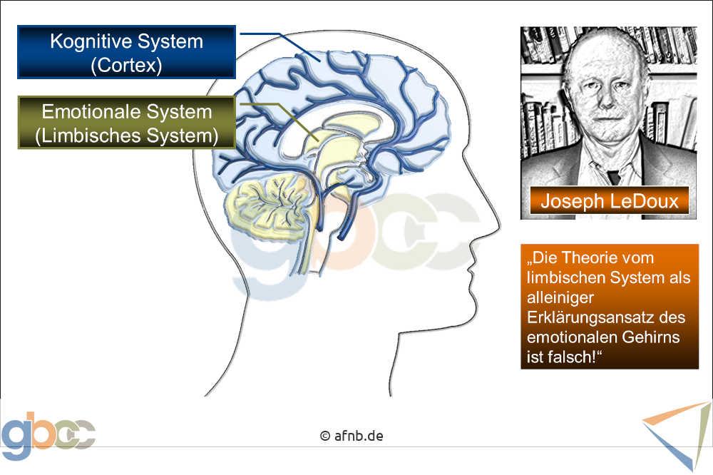 Neuromarketing-I-2