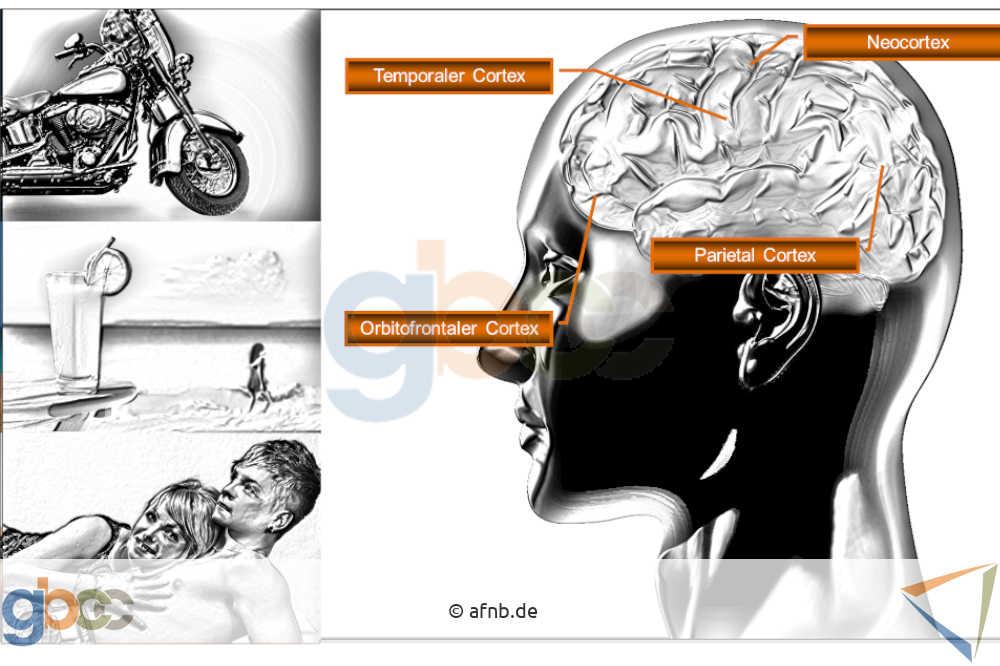 Neuromarketing-I-5