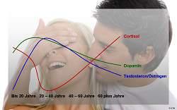 Entwicklung von Cortisol, Dopamin und Testosteron altersbedingt visualisiert