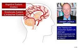 Visualisierung des kognitiven und des emotionalen Systems im Gehirn und Portrait von Joseph LeDeux
