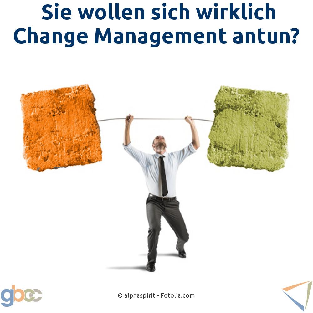 Sie wollen sich wirklich Change Management antun?