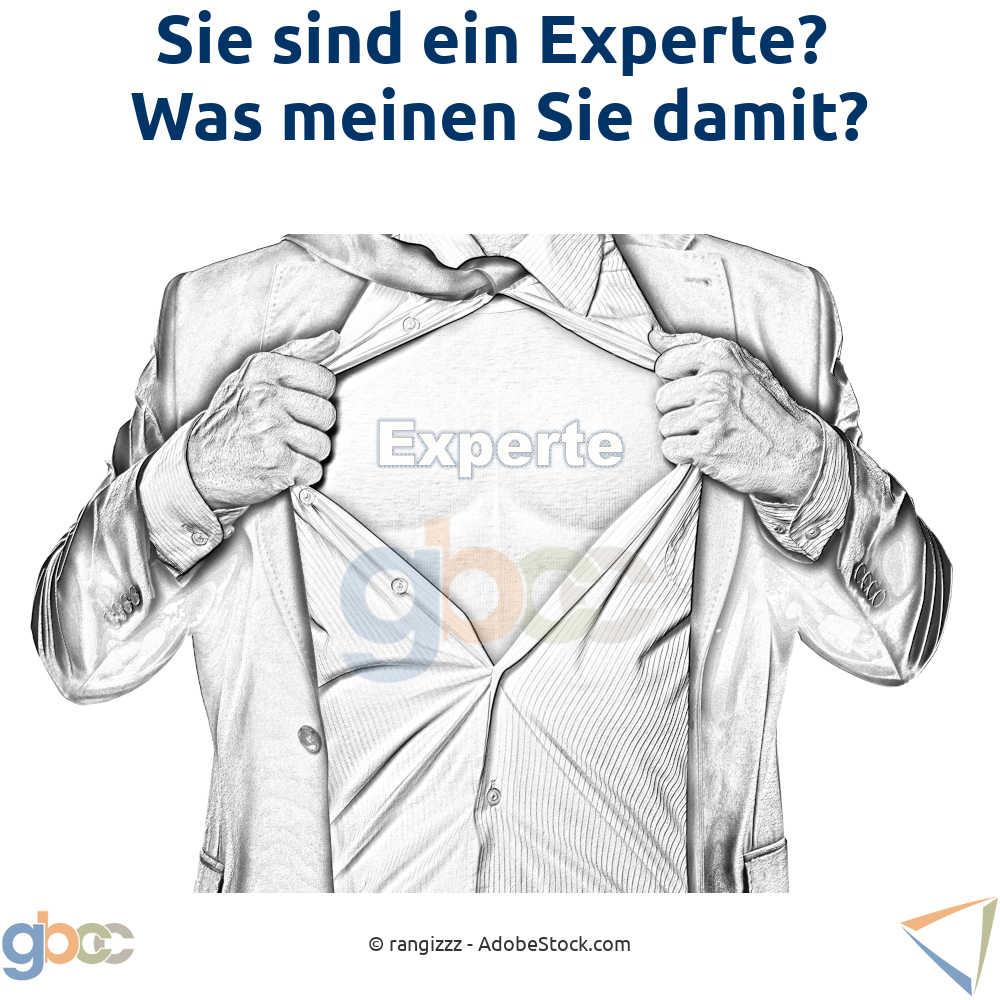 Sie sind ein Experte? Was meinen Sie damit?