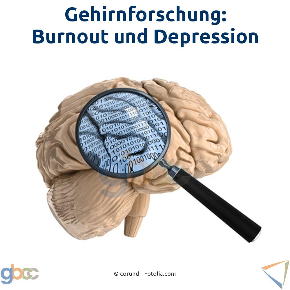 Gehirnforschung: Burnout und Depression