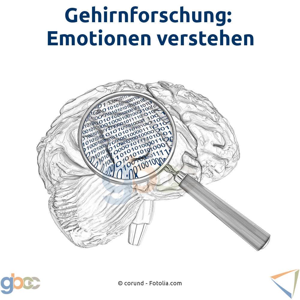 Gehirnforschung: Emotionen verstehen