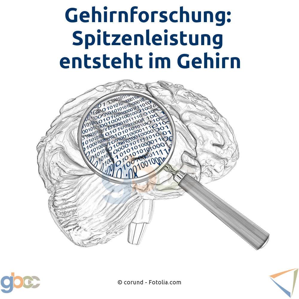 Gehirnfirschung: Spitzenleistung entsteht im Gehirn
