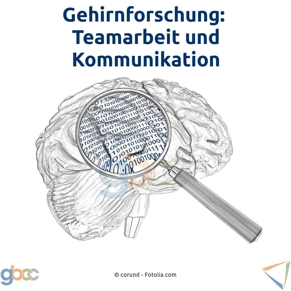 Gehirnforschung: Teamarbeit und Kommunikation